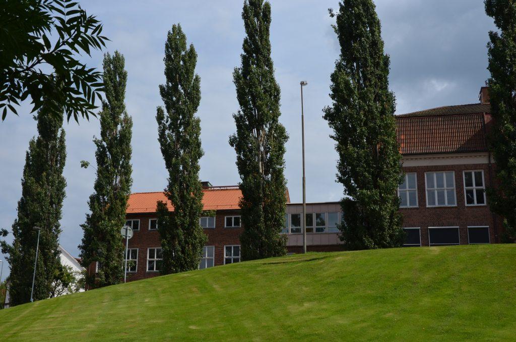 Bild på Stenbocksskolan med gräsytor och träd i förgrunden