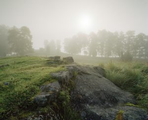 Bild på Vädersholm. Stenar på en åker.