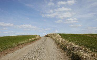 Bild på en grusväg som leder upp till ett krön. Gräsytor vid sidan av vägen.