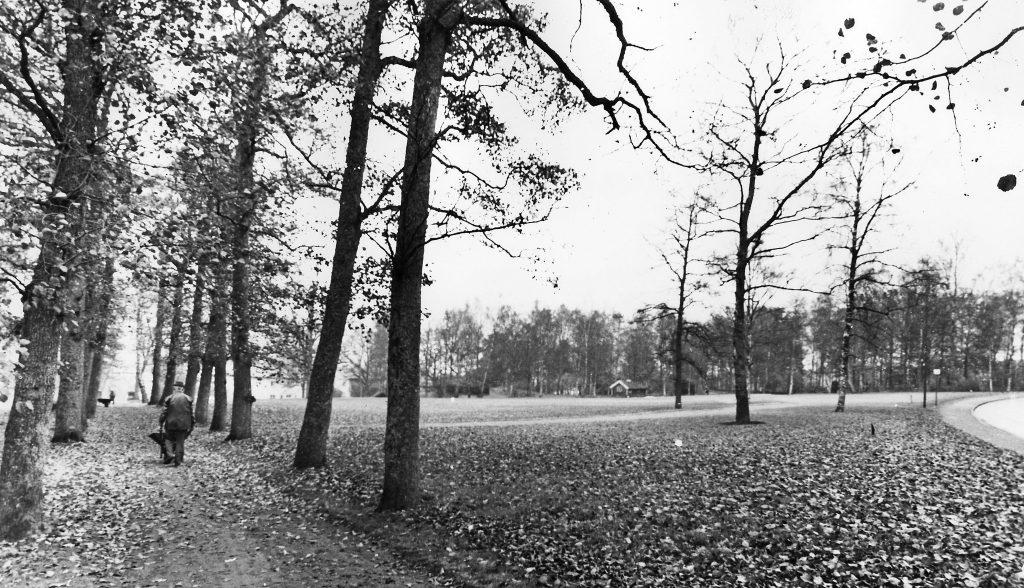 Svartvit bild över Ulricehamns stadsparks gräsytor