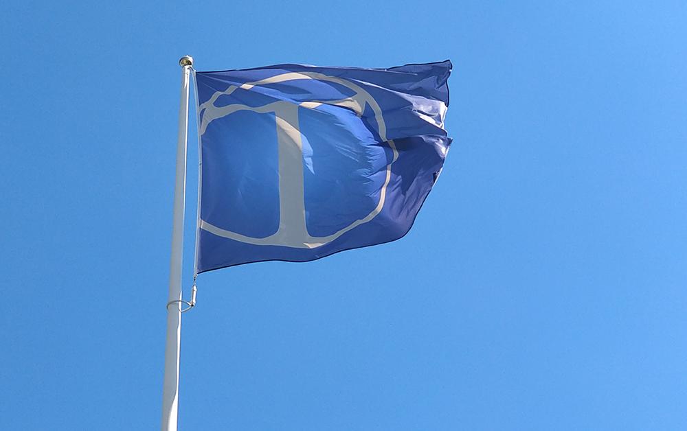 Tingsholmsgymnasiets flagga