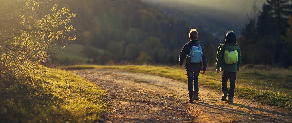 Bild på Två pojkar som går på en landsväg med ryggsäckar