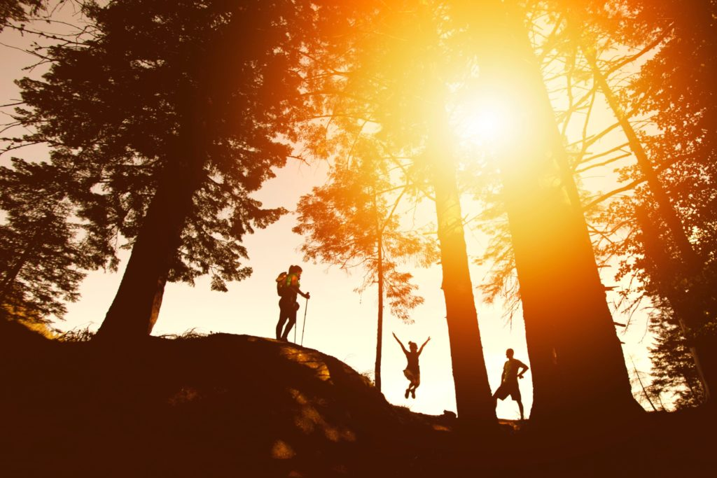 Tre personer som står i en skog