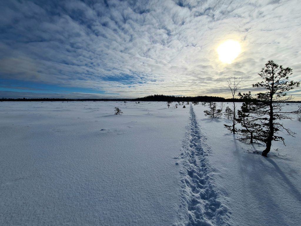 Fotspår i snön på Komosse.