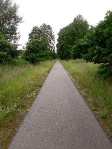 Banvall med gräs på båda sidor